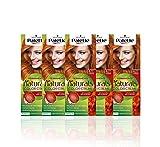 Schwarzkopf Palette Naturals - Coloración Permanente Tono 8.77 Cobrizo Intenso, 550 gr (Pack de 5)